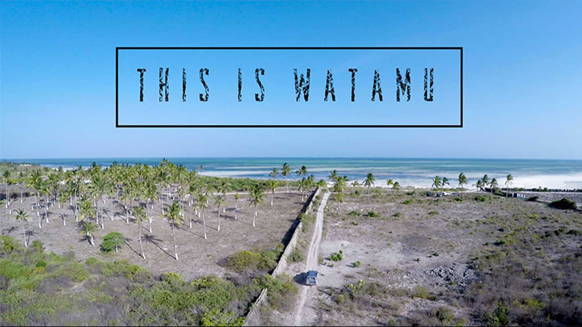 Tribe Watersports - Watamu Kenya - Kitesurfing - Wakeboarding - Stand Up Paddleboarding - This is Watamu - this is watamu kenya 1