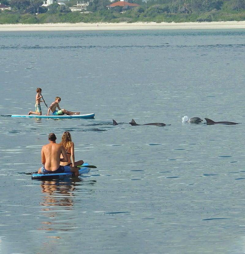 Tribe Watersports - Watamu Kenya - Kitesurfing - Wakeboarding - Stand Up Paddleboarding - Stand Up Paddle Boarding - sup 4 1