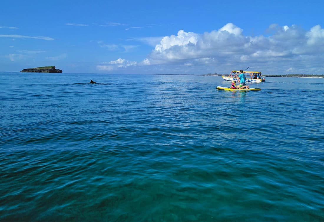 Tribe Watersports - Watamu Kenya - Kitesurfing - Wakeboarding - Stand Up Paddleboarding - Kitesurfing Holiday - Kitesurfing School - kitesurfing kenya - Kitesurfing School Kenya - Watamu Kitesurfing - Watamu Kitesurfing Location - tribe water